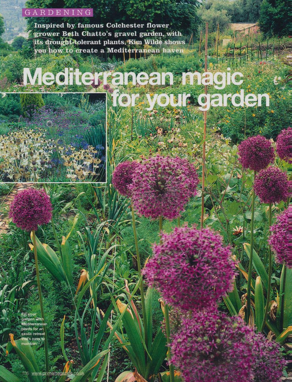 Mediterranean Magic For Your Garden Wilde Life