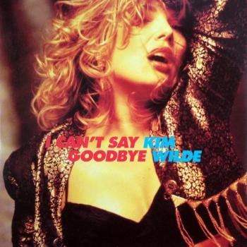 'I can't say goodbye' single sleeve