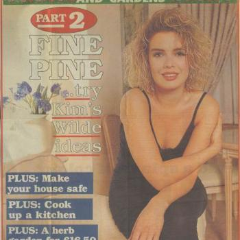 Daily Mail - Beautiful homes supplement (UK), June 29, 1993
