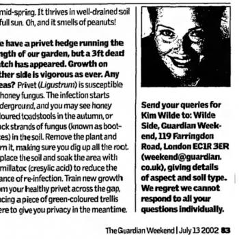 The Guardian (UK), July 13, 2002